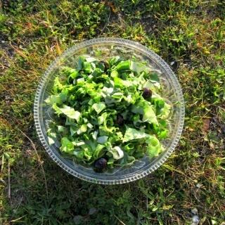 Bakla Filizi Salatası